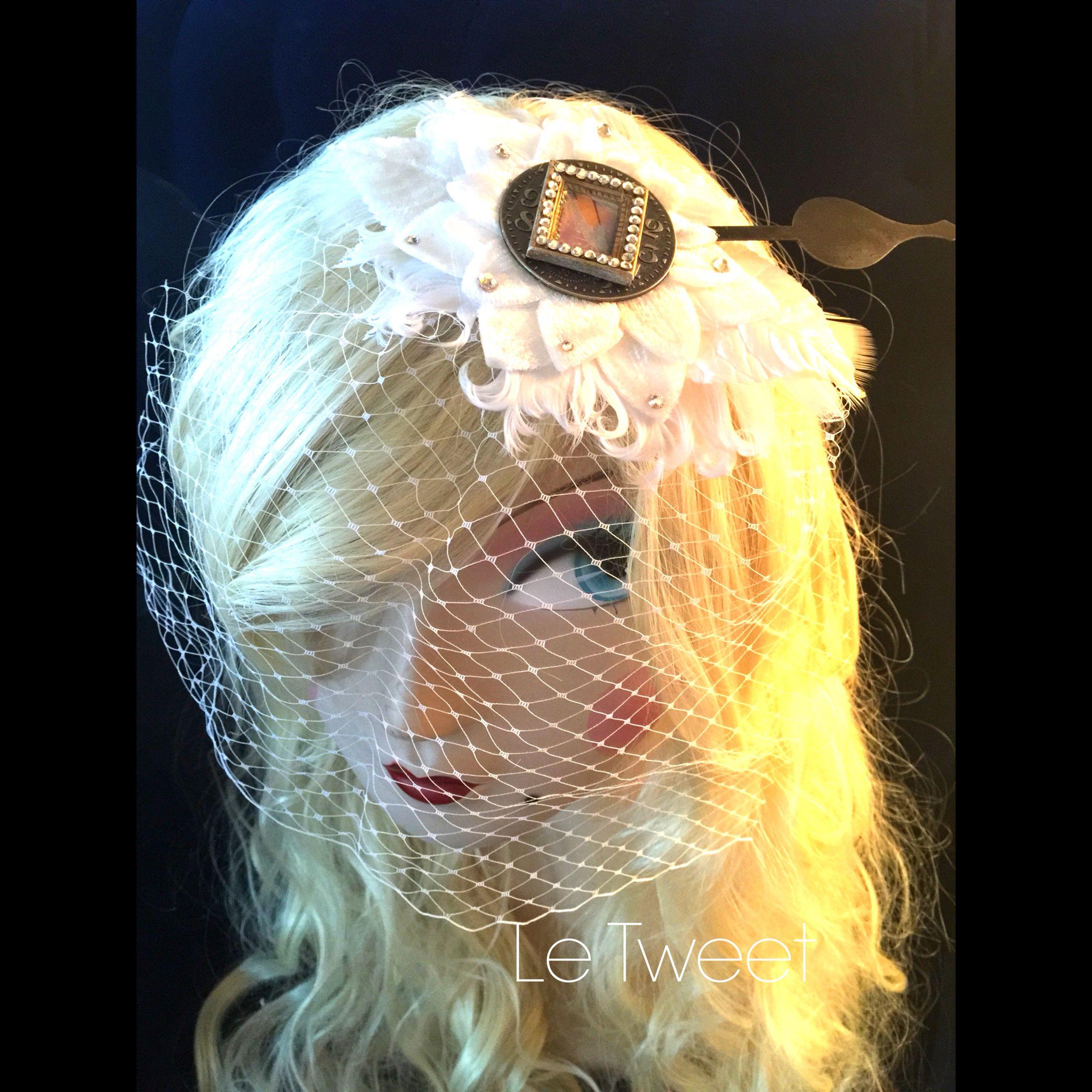 Cinderella Birdcage Veil