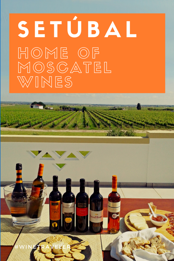 Setúbal region is famous for their right and sweet Moscatel wines. Very close to Lisbon city, this is a wine region to explore! #winetourism #portugal #portuguesewines #winetrip #winetour