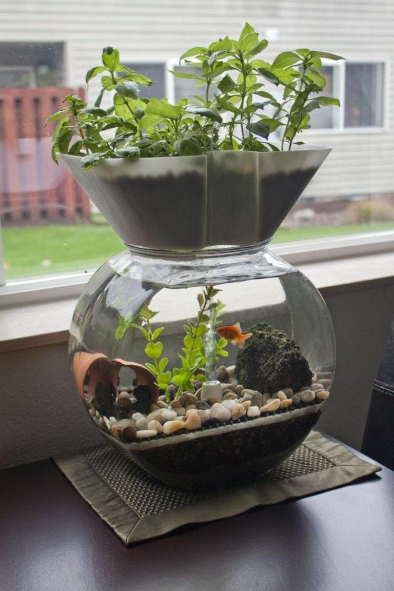 30 mini aquaponics ideas for home decorations