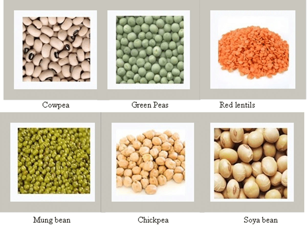Fruits And Vegetables Vocabulary In English Cereals And Pulses