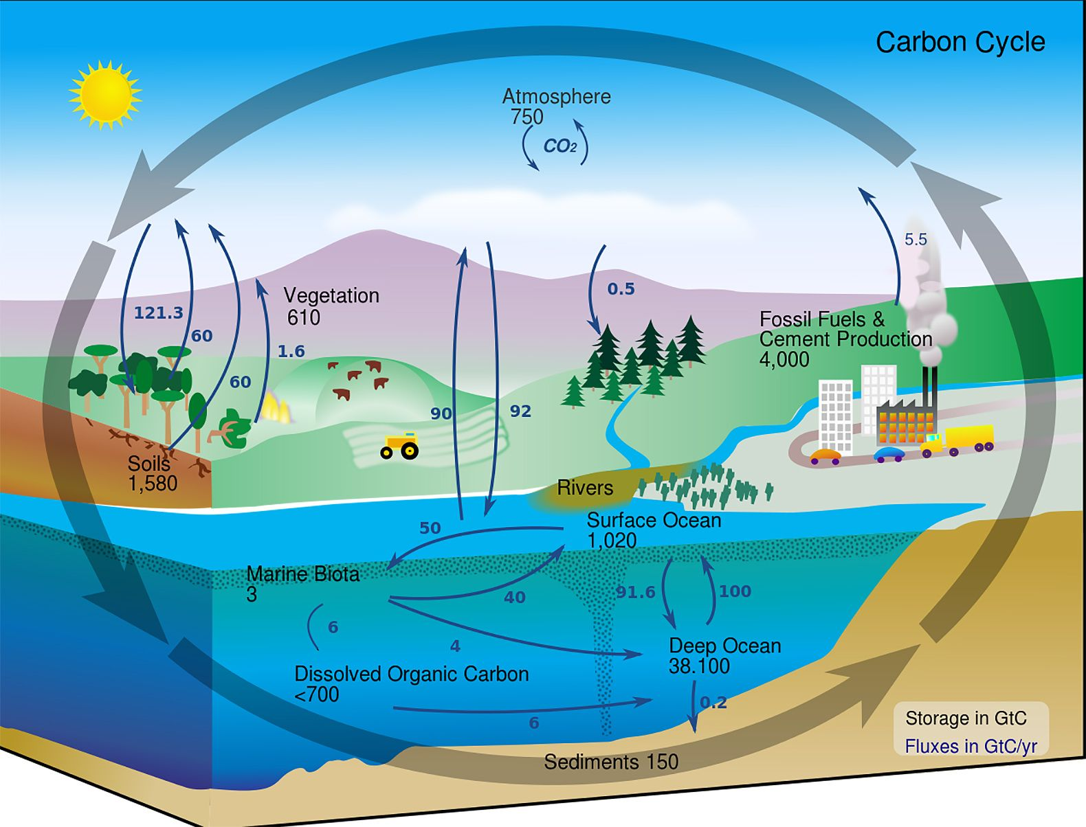 Eco Architect William Mcdonough Unveils New Language To End The War On Carbon Carbon Cycle Nitrogen Cycle Carbon Sink
