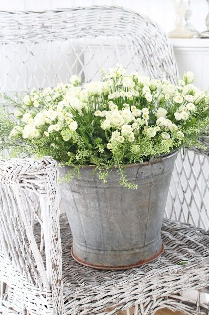 Anyone know the name of this flower? | Wedding Decor Ideas ...