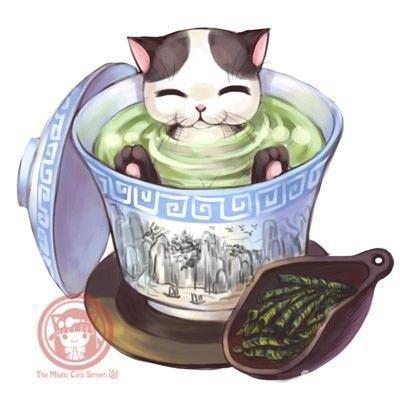 #cat #tea #cup #asian