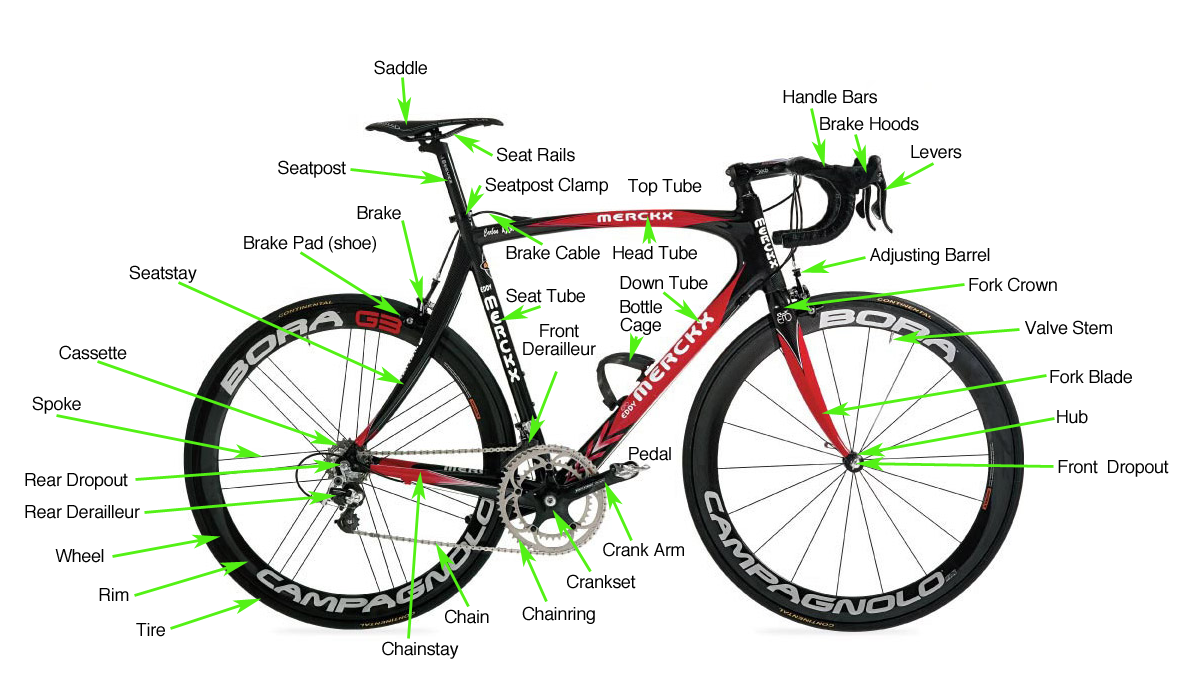 parts check out this helpful video on bike parts for a more visual
