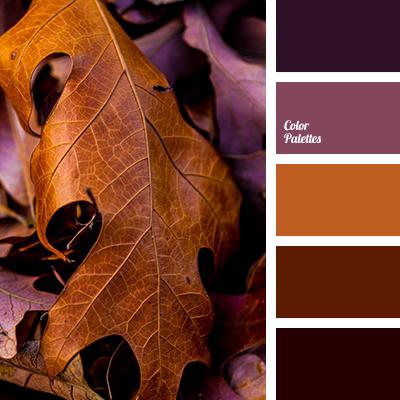 amethyst color, beige color, black-purple color, blue-purple color, brown color, brown with a hint of grey, color for house, color matching