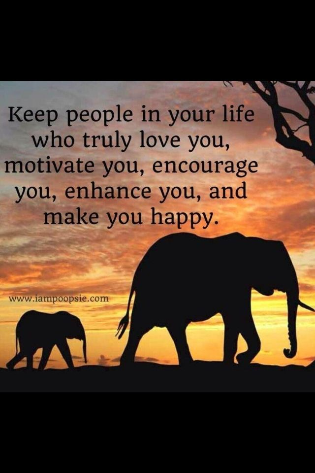 Elephant Quotes | I Just Love Elephants And Inspirational Quotes Satisfaction