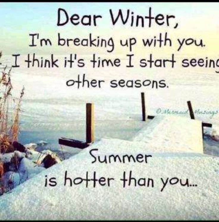 Great Winter Funny Quotes   Bing Images
