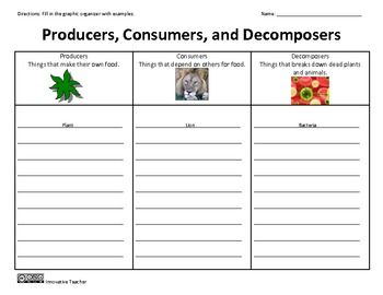 producers consumers decomposers graphic organizer tpt science lessons science classroom. Black Bedroom Furniture Sets. Home Design Ideas