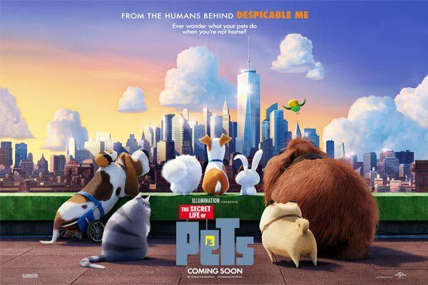The Secret Life Of Pets Animation Download Secret Life Of Pets Secret Life Movie In The Park