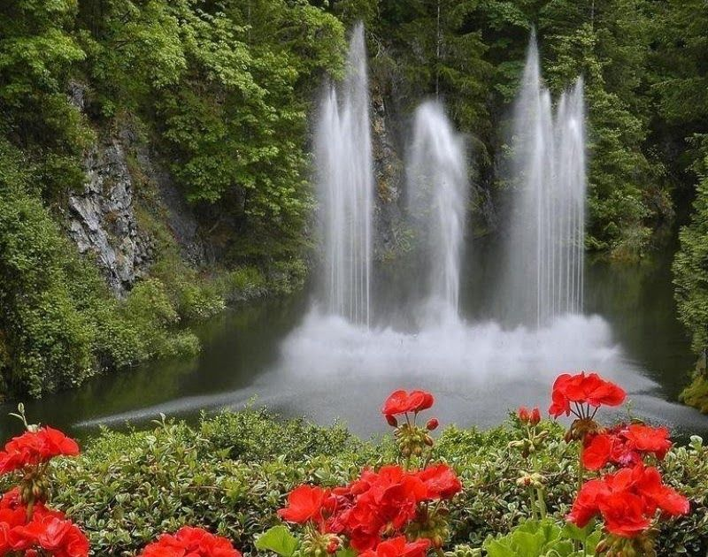 29 Nature Waterfall Wallpaper Hd Download 10 Best Waterfall And Flowers Wallpaper Full Hd 1080p For P In 2020 Waterfall Wallpaper Fall Wallpaper Hd Nature Wallpapers