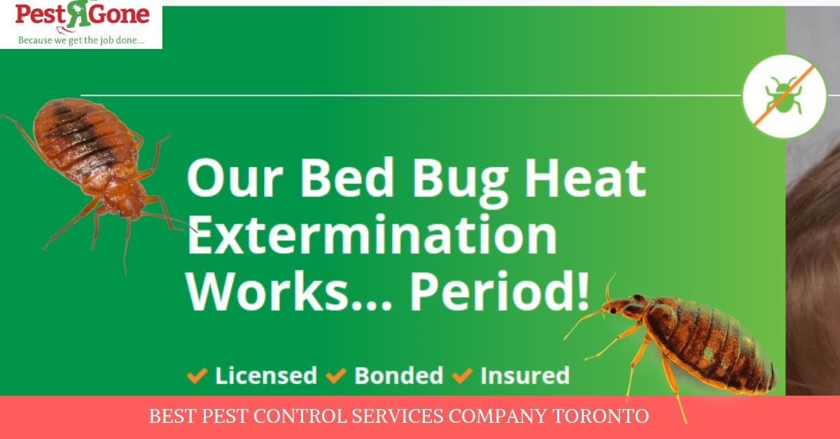 Pest Control For Bed Bugs Using High Temperature Bed Bug Heat