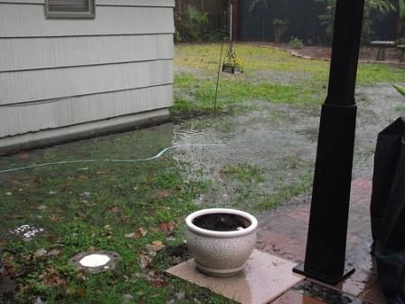 Get Rid Of The Excess Water In Your Backyard Standing Water Breeds