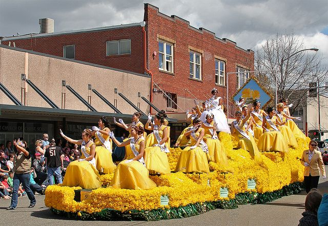 Daffodil Parade... Tacoma, Washington every April... YAY.  I played my saxophone in this parade with my high school marching band in the 80's.
