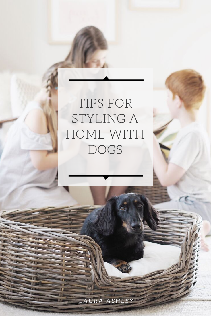 Tips for styling a home with dogs Laura ashley, Dogs, Tips