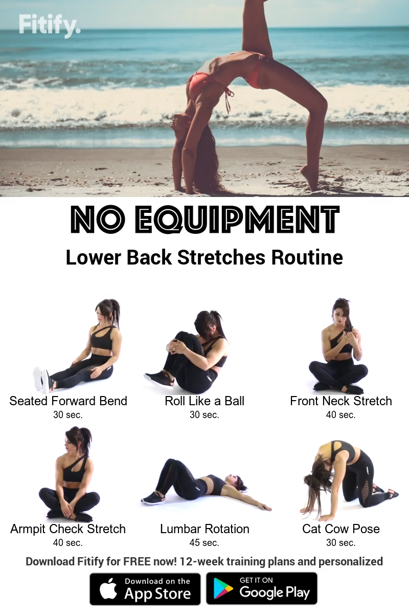 BACK stretches WORKOUT without EQUIPMENT #fitnessexercisesathome