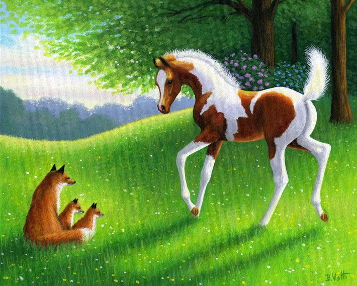 SUMMER MORNING FRIENDS.....this foal has just discovered a vixen fox & 2 kits in the sunlit pasture on a summer morning