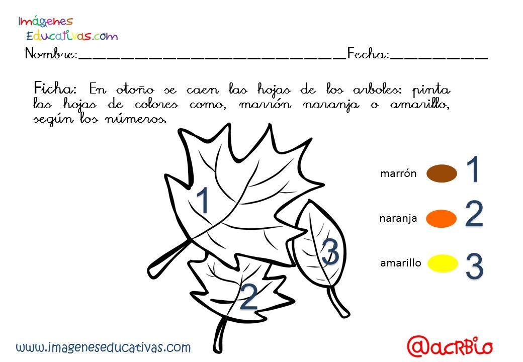 Completo Cuadernillo Temático Otoño Diferentes Niveles. 30 Fichas ...