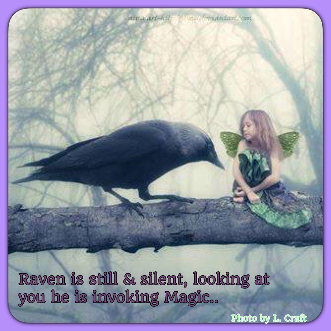 Raven Totem... Magick, Shapeshifting, Distant Healing