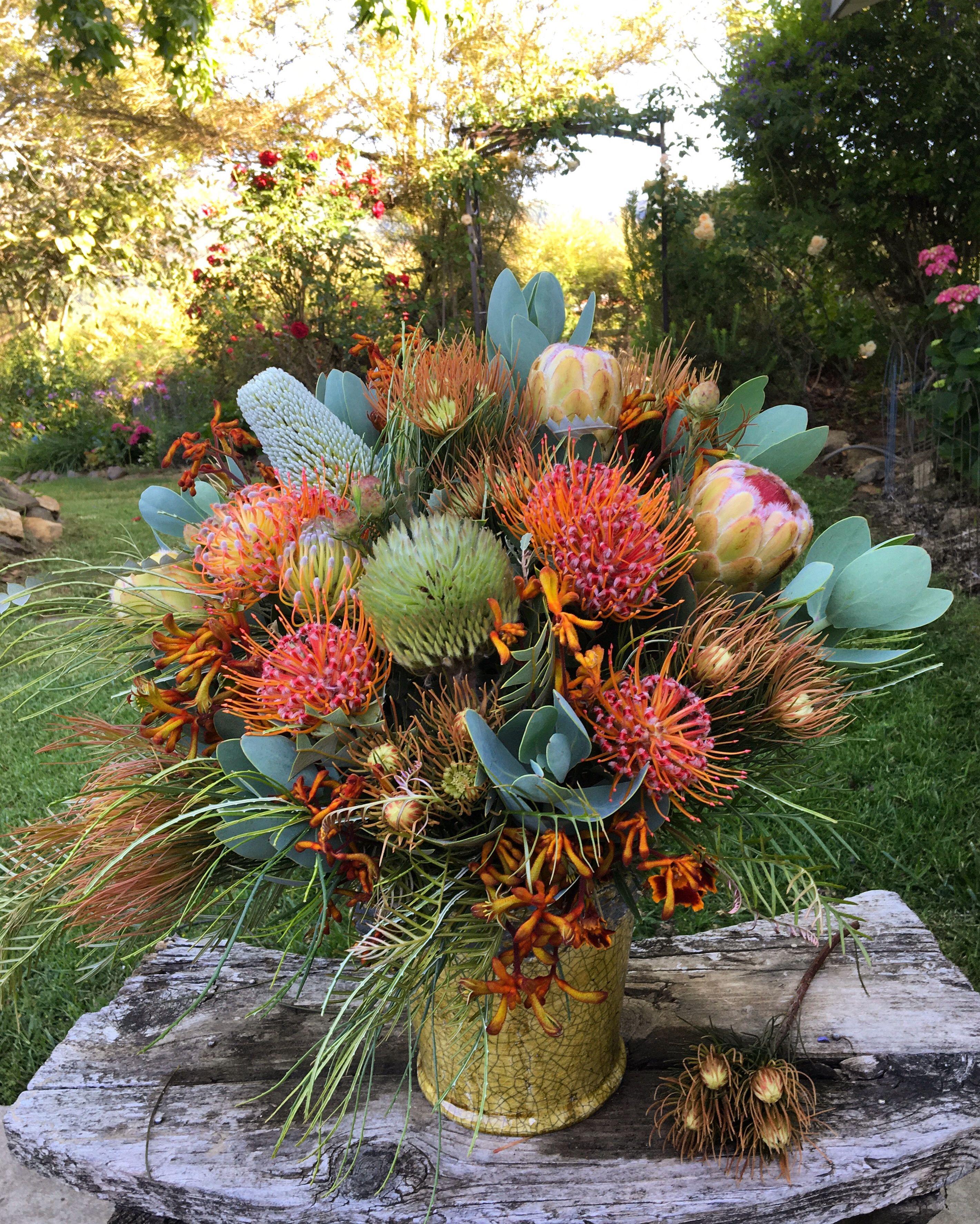 Protea Banksia Leucospermum Arrangement In 2020 Seasonal Flowers Flower Arrangements Flowers