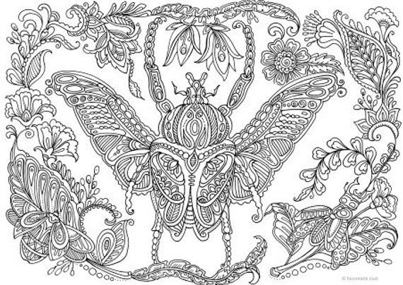 Bug Printable Adult Coloring Page From Favoreads Book Rhpinterest: Insect Coloring Pages For Adults At Baymontmadison.com