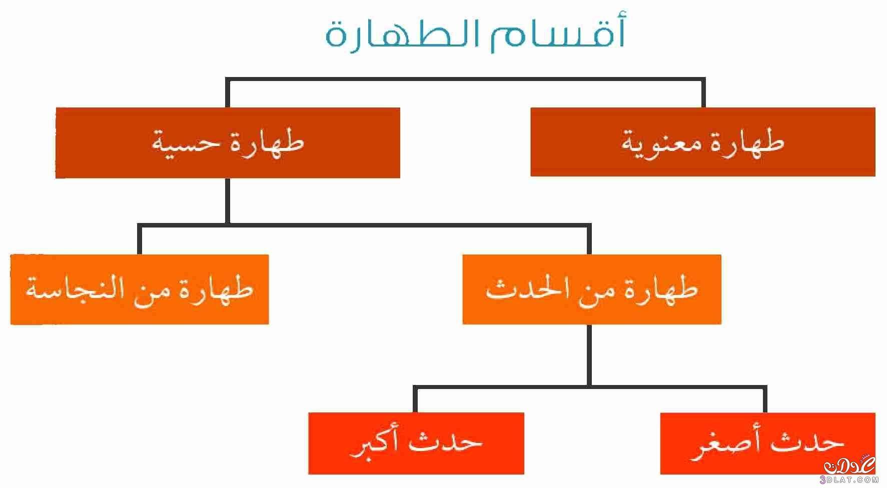 اقسام الطهارة Chart Bar Chart