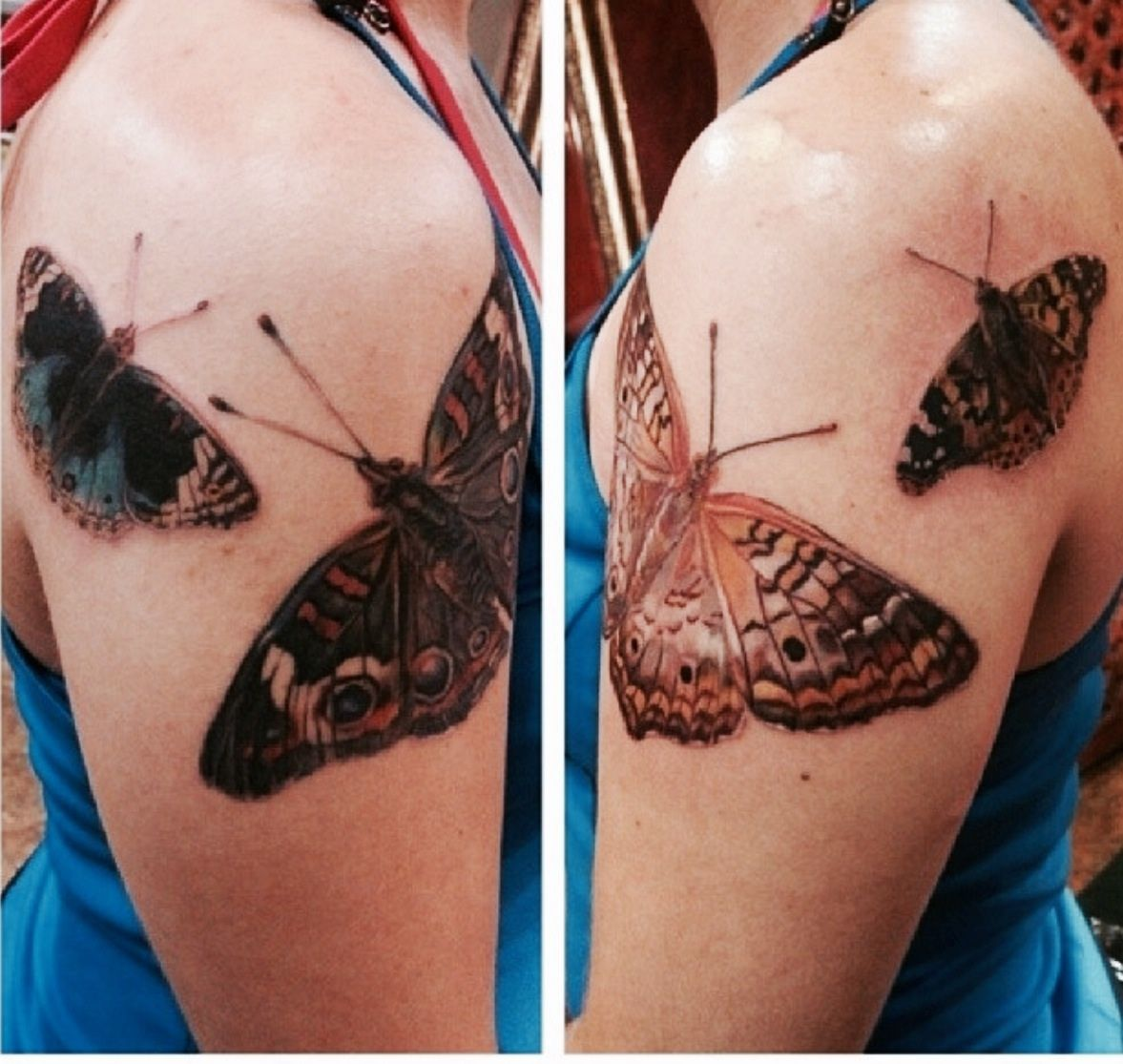 Realistic Butterfly Tattoos On Both Arms These Are My Personal Tattoos Realistic Butterfly Tattoo Butterfly Tattoo Tattoos