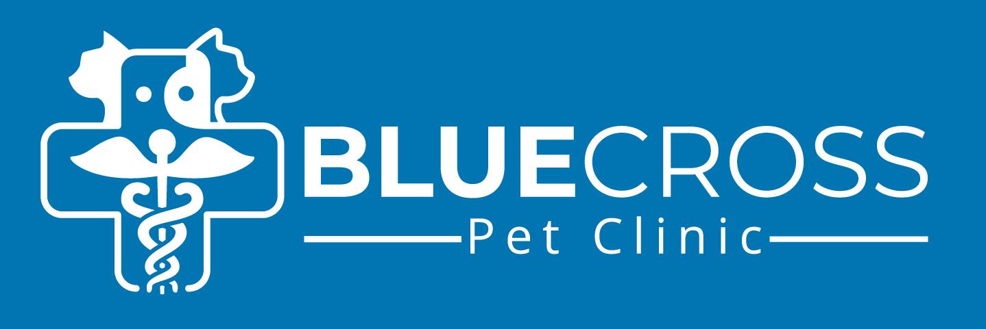 Veterinary Services In San Antonio Tx 78228 Blue Cross Pet Clinic Pet Clinic Veterinary Services Veterinary Hospital