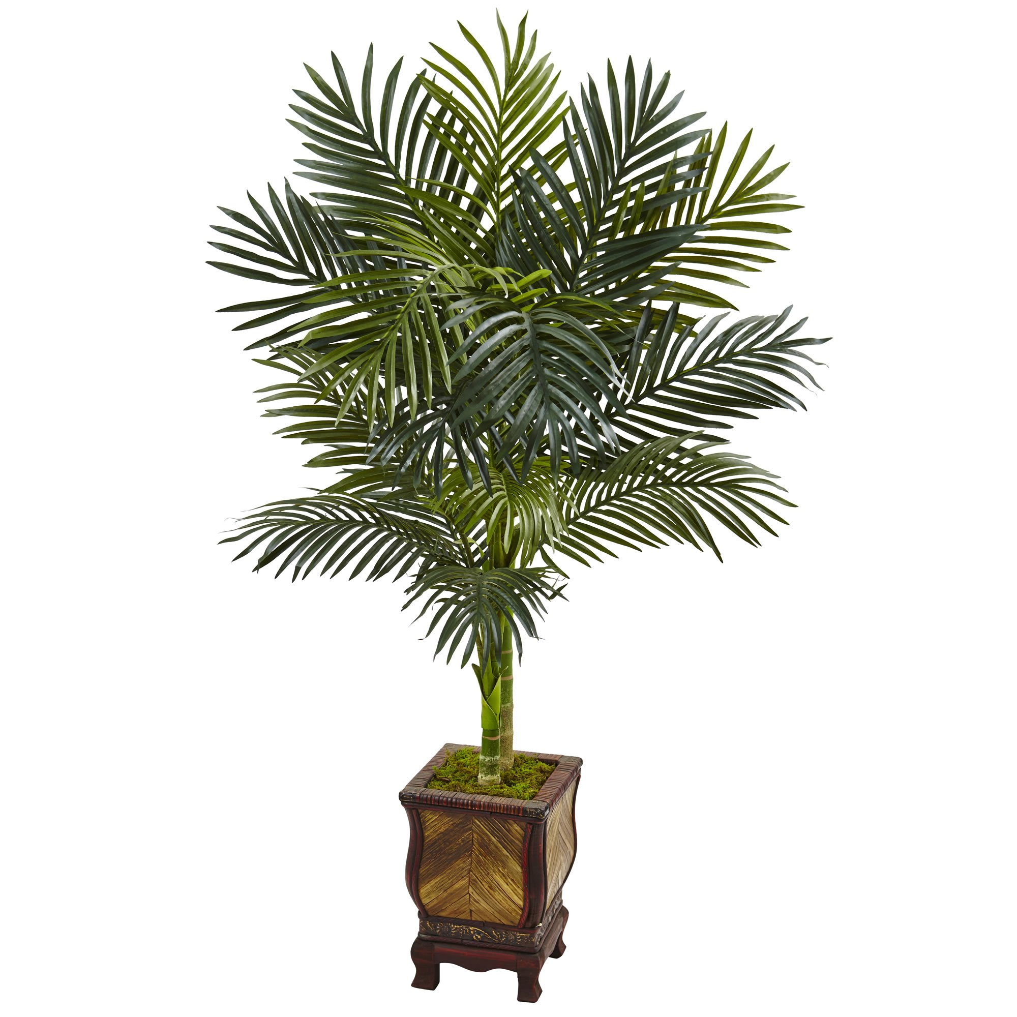 Artificial tree foot golden cane palm tree in wooden decorated