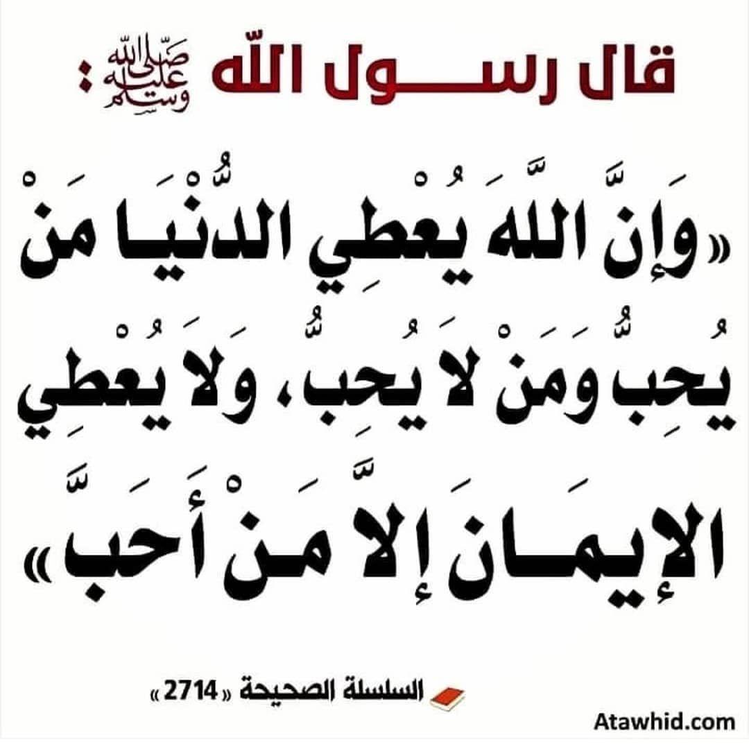 2 033 Mentions J Aime 33 Commentaires تأملات قرآنيه Qranyhtmlt Sur Instagram Mahmoud S Quran Quotes Love Islamic Phrases Islamic Inspirational Quotes