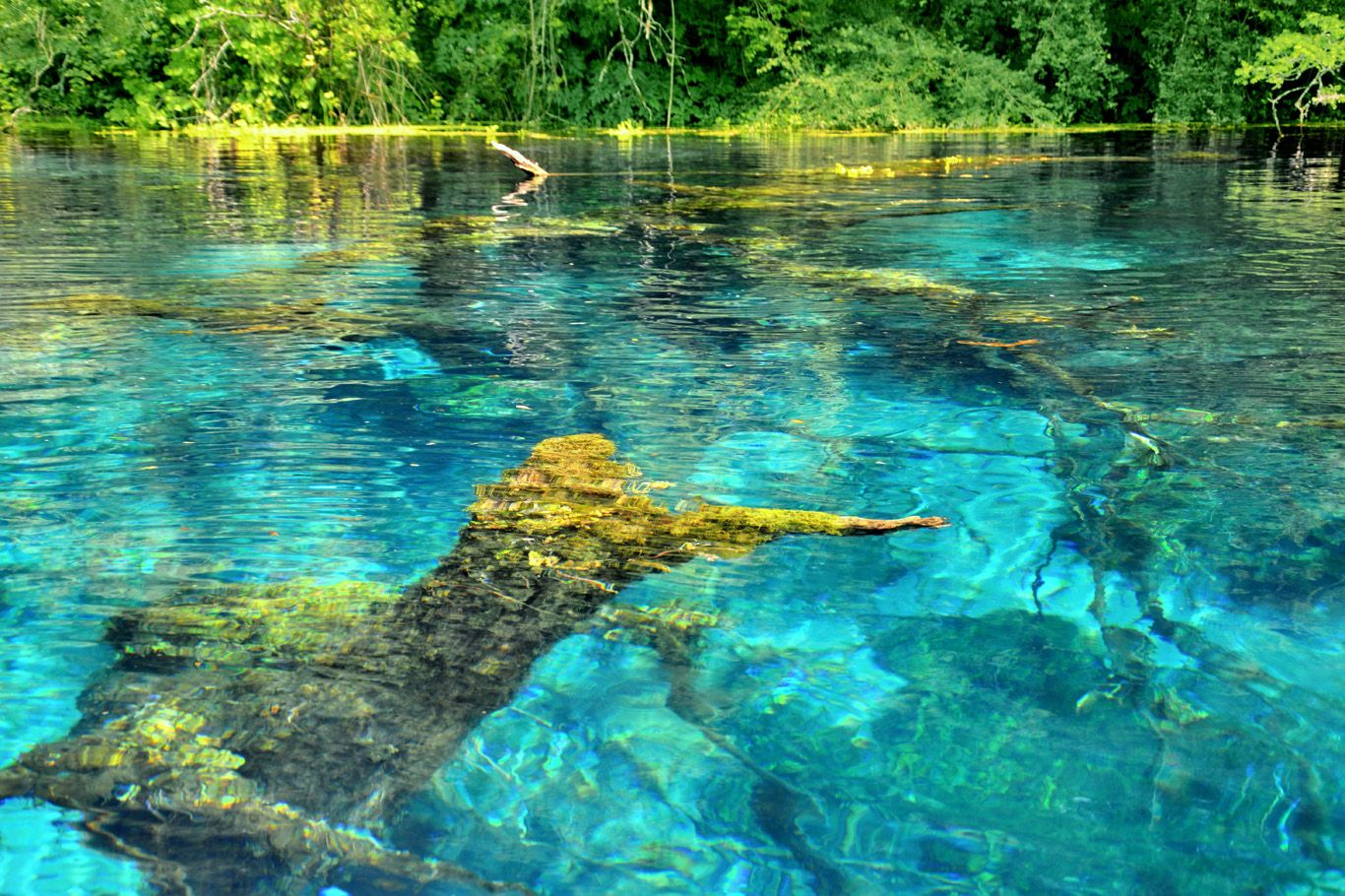 One Of The Clearest Lakes In The World At The Blue Eye Spring In Albania Turquoise Waters And Fairy Tale Like S Albania Travel Visit Albania Adventure Travel