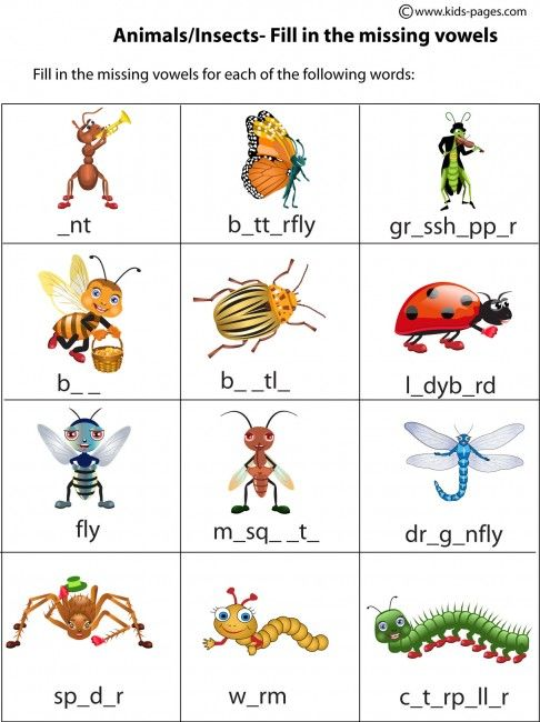 Kids Pages Insects Insects Unit Pinterest Insects