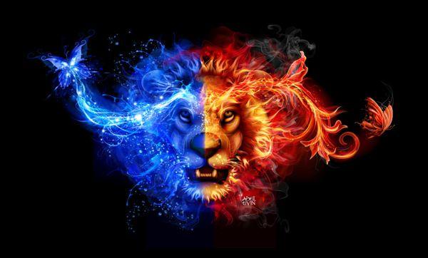 Blue Fire Lion Bing Images Fire Lion Lion Live Wallpaper Lion Fire lion wallpaper hd download