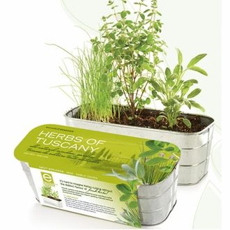 #Herbs of Tuscany Herb Kit