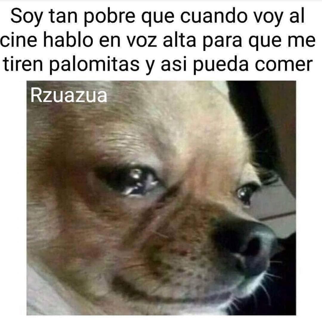 Mexican Latino Chicano Guapo Losangeles California Mexicansbelike Mexicanproblems Hispanicsbelike Hi Memes Divertidos Mascotas Memes Gracioso