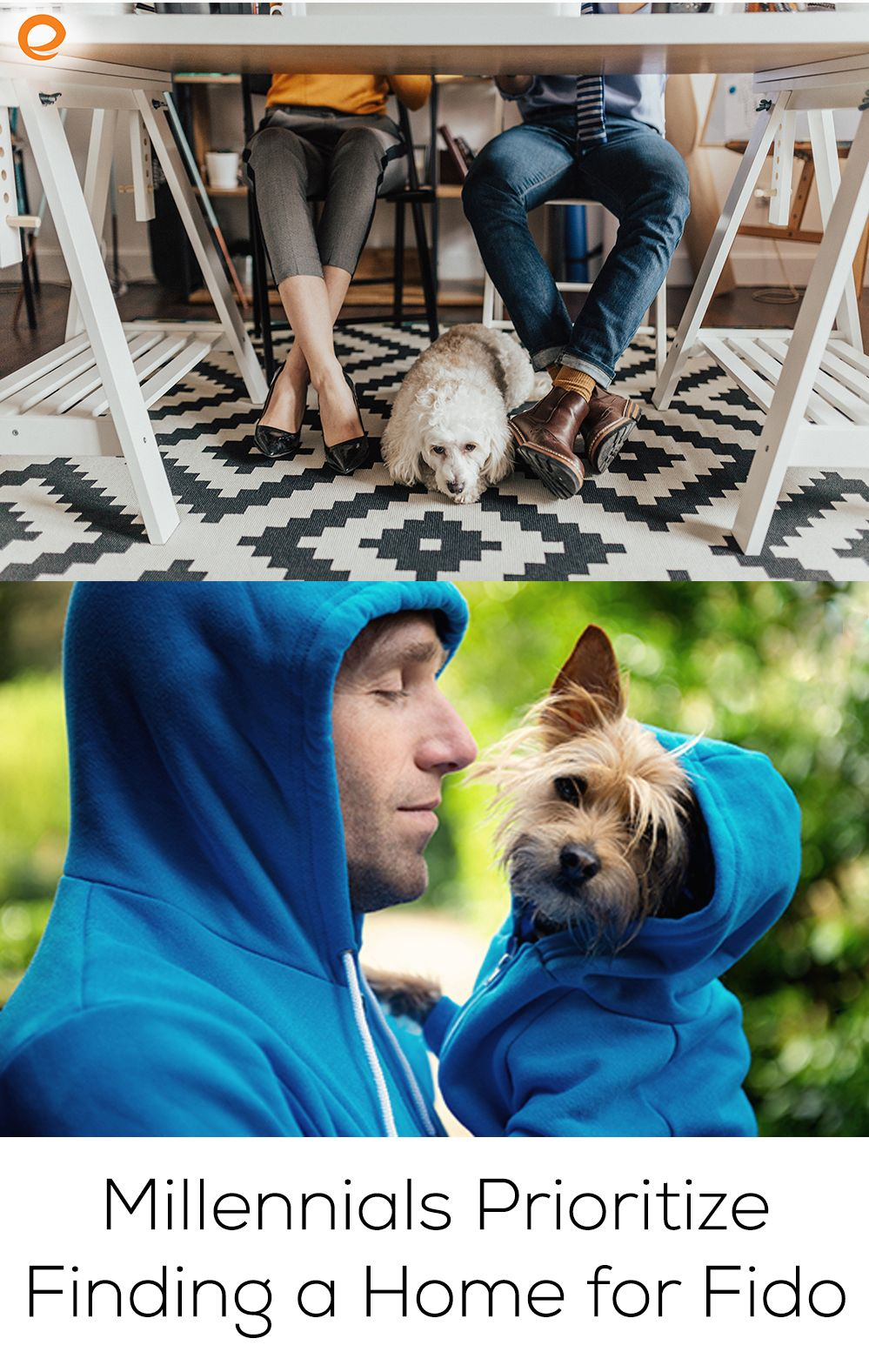 Millennials prioritize finding a home for fido finding a