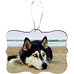 siberian husky christmas ornament on beach - Husky Christmas Decoration