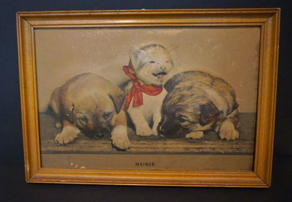 Vintage 1940 S Susie Kitten Puppies 3d Puffed Framed Print Cats