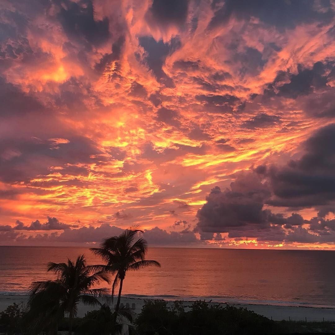 Sunrise In Miami Beach Patrici47954327