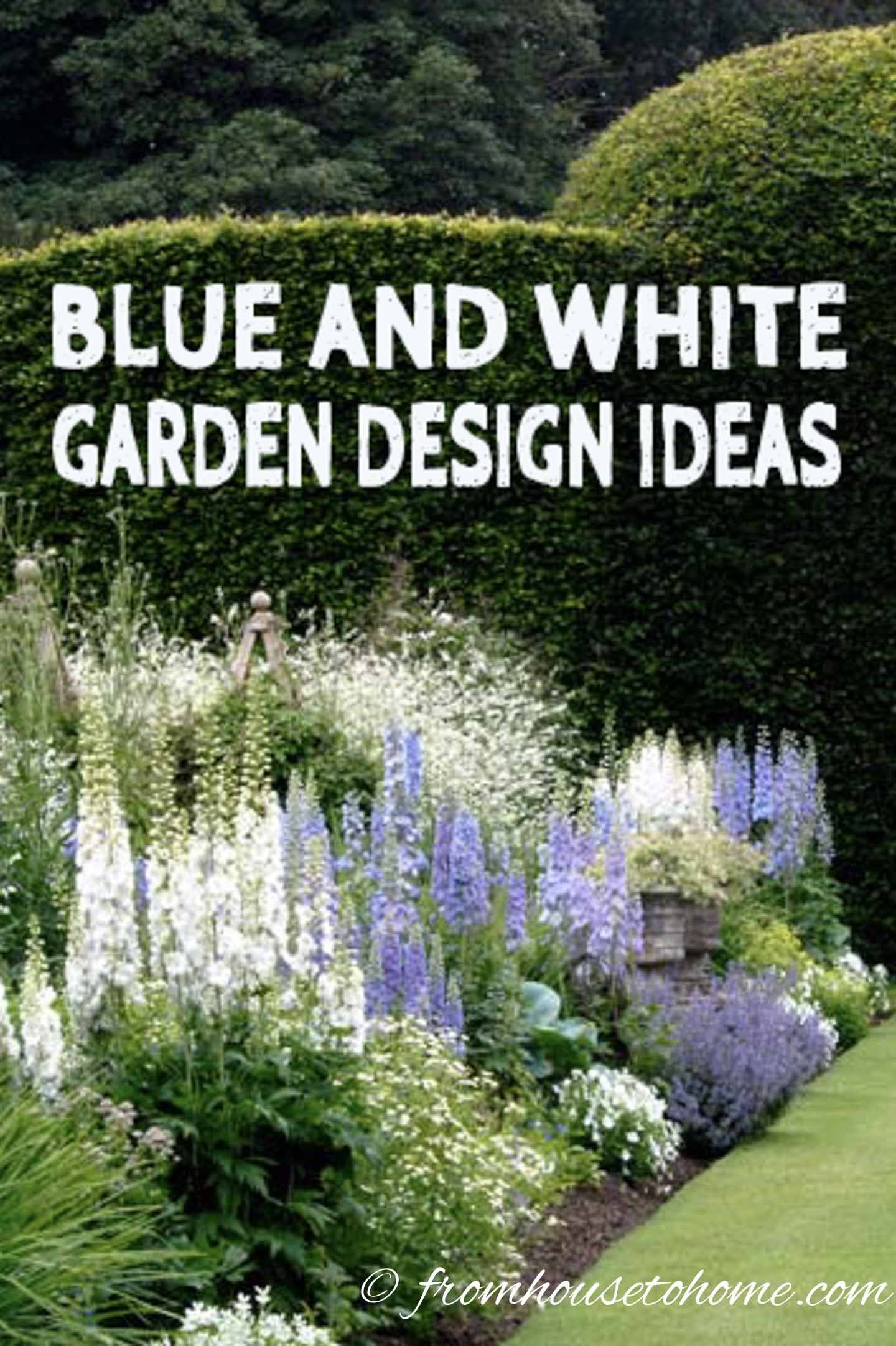 Blue And White Garden Design Ideas White Gardens Blue Flowers