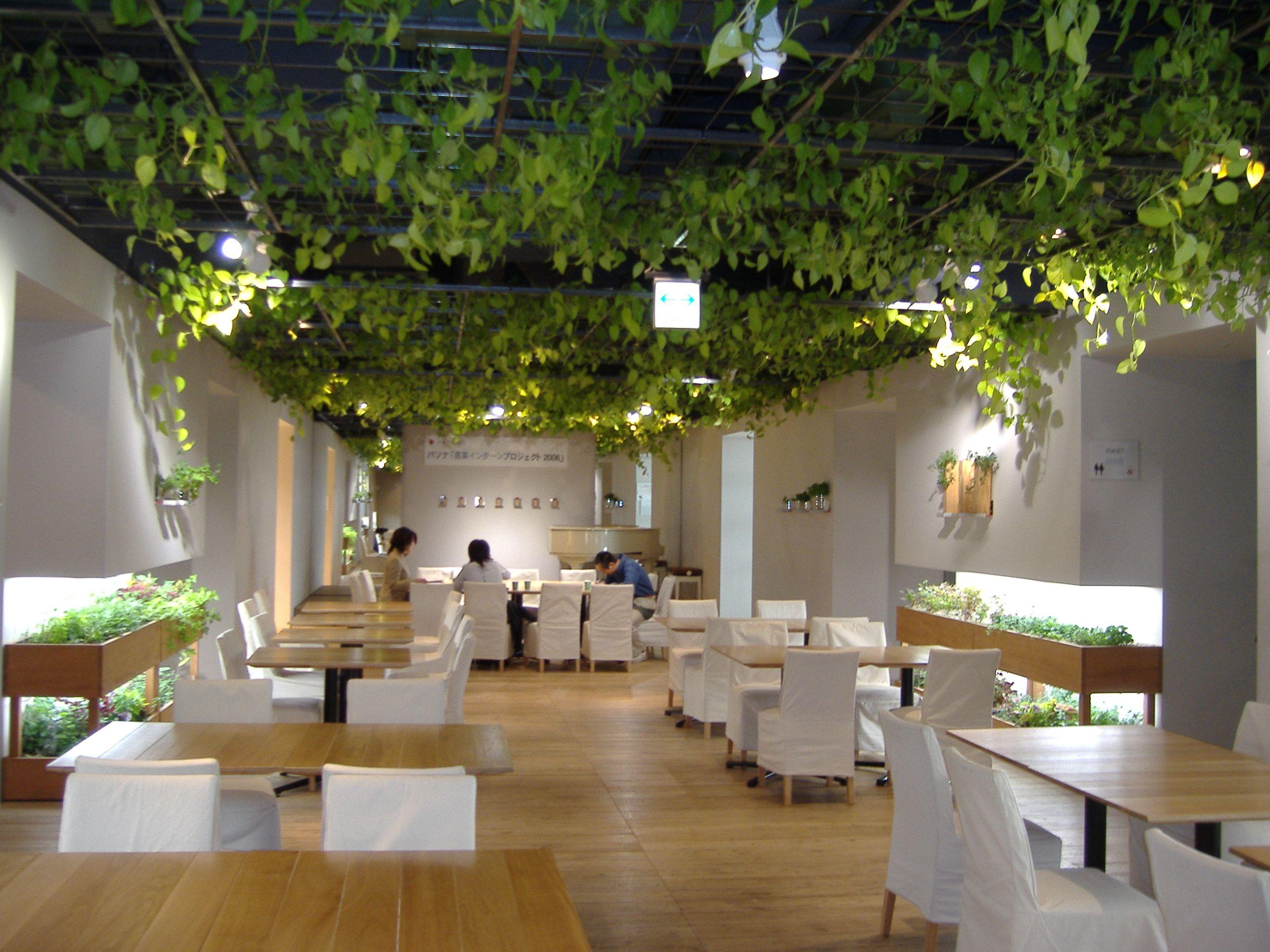 Nhn Japan株式会社は東新宿にもオフィスがあるらしいので行ってきた