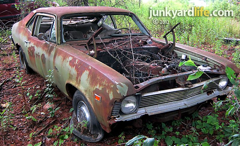 1969 Chevy Nova Muscle Cars Classic Cars Muscle Salvage Cars