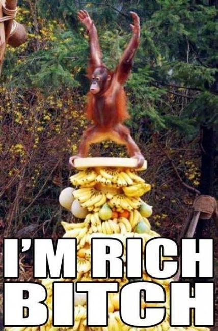 c7de8e1472a8c488b848954341dd59c3 - How to grow rich - How To Make Money Tips