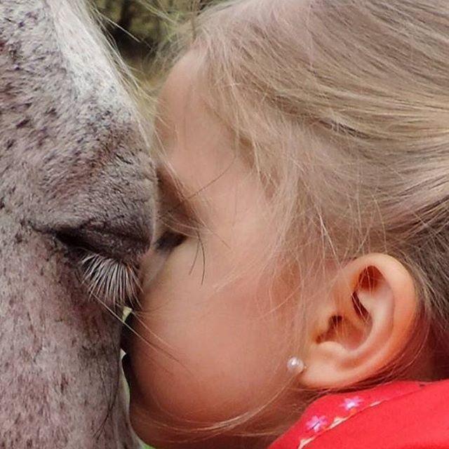 Una foto dice más que mil palabras.... atrévete a vivirlo en @happyoucolombia  #coachingconcaballos #happyoucolombia #caballos #felicidad #conexion #naturaleza #familia