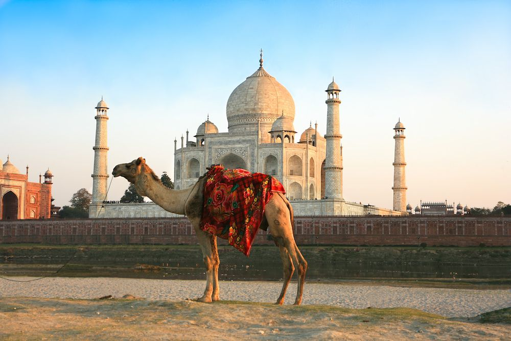 10 Must See Sights In India Tourism India India Poster Agra