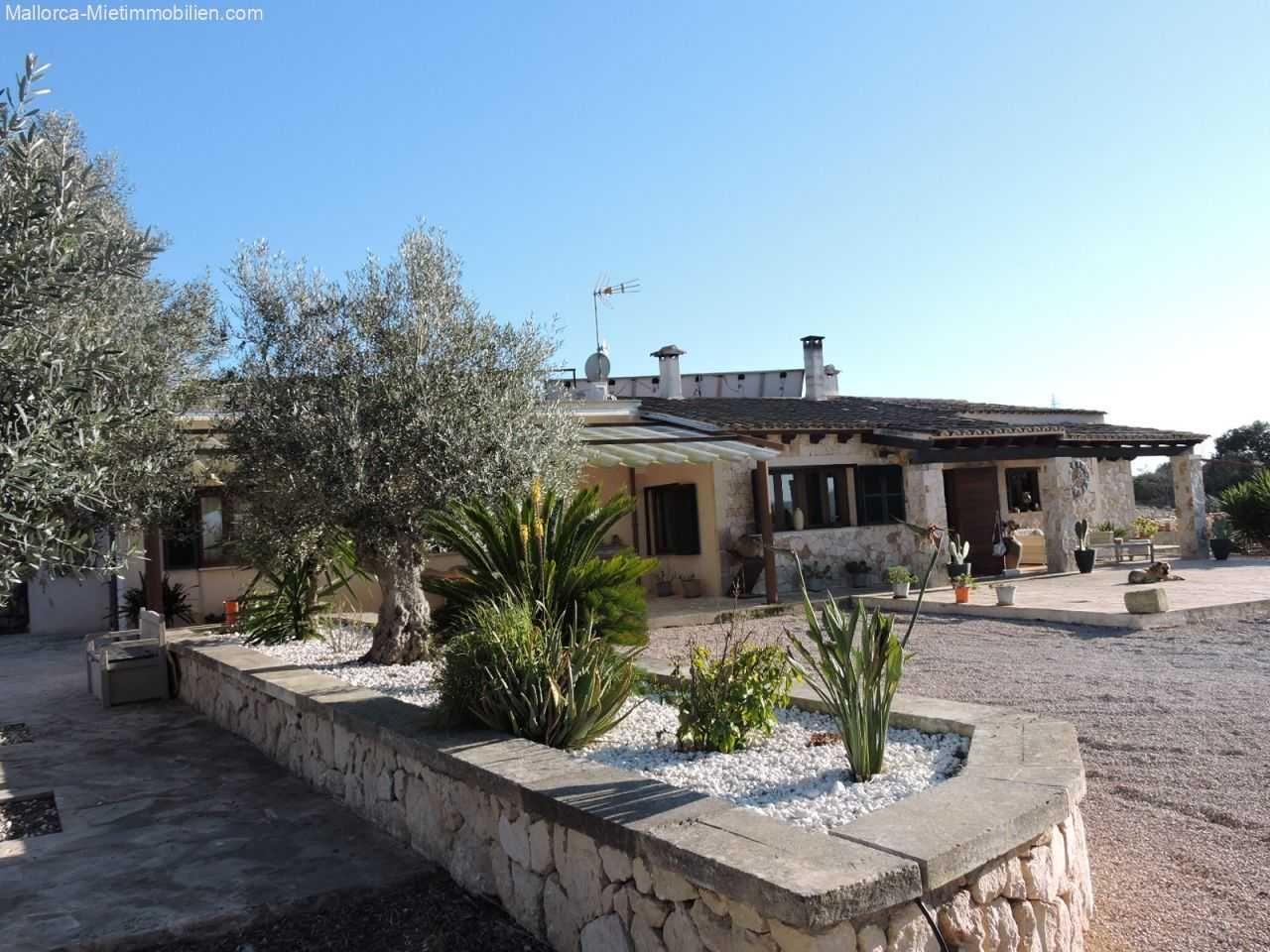 Manacor Vermietung Finca Mit 4 Zimmern 2 Badern Terrassen Pool Zur Miete 1650 Eur Pro Monat Manacor Immobiliens In 2020 Finca Immobilien Mallorca Immobilien