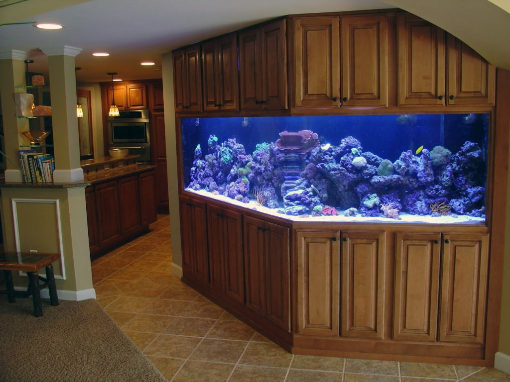Cabinet aquarium fish tank tropical - I Have 3 Tropical Aquariums But What I Really Want To Build Into The House