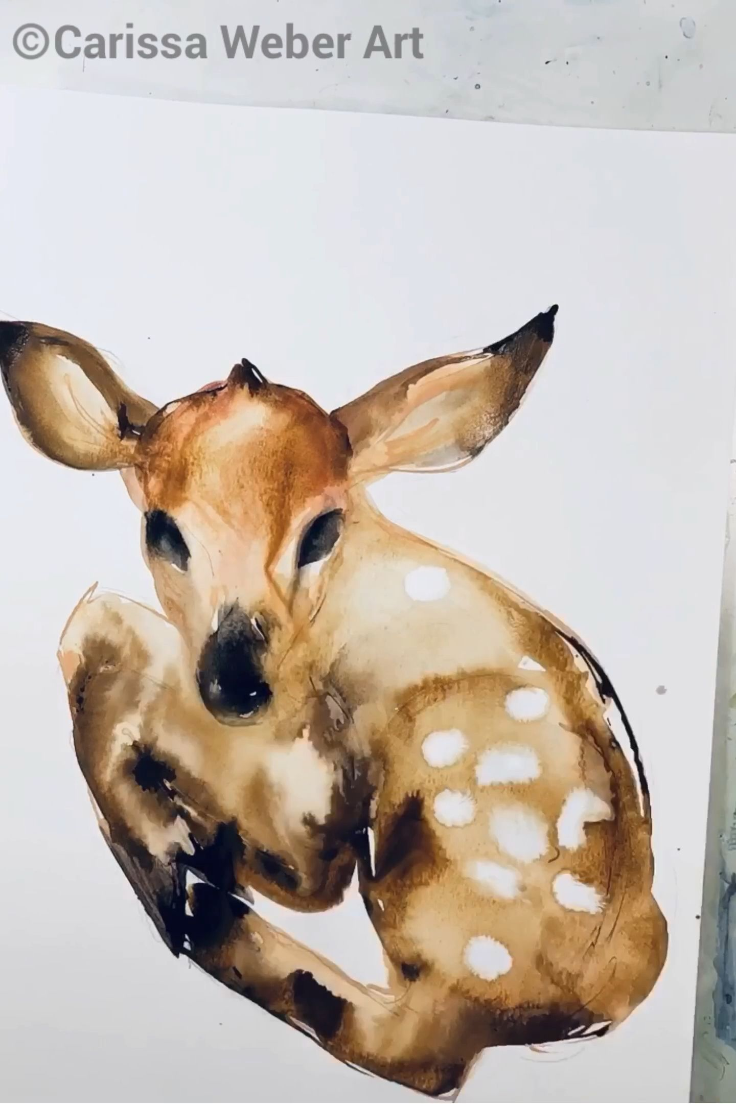 Baby Deer Painting process video by Carissa Weber Art | fawn, diy, animal, watercolor ink, craft