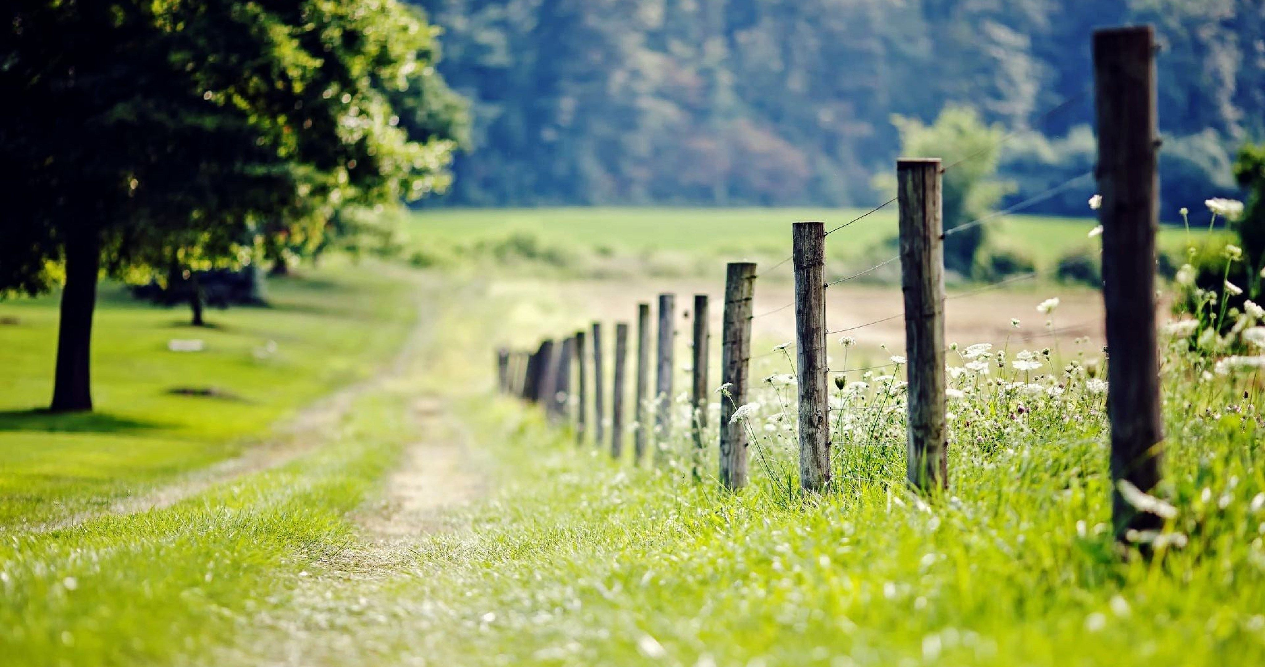 Fence In Nature 4k Ultra Hd Wallpaper Nature Backgrounds Photoshop Backgrounds Background Images Hd