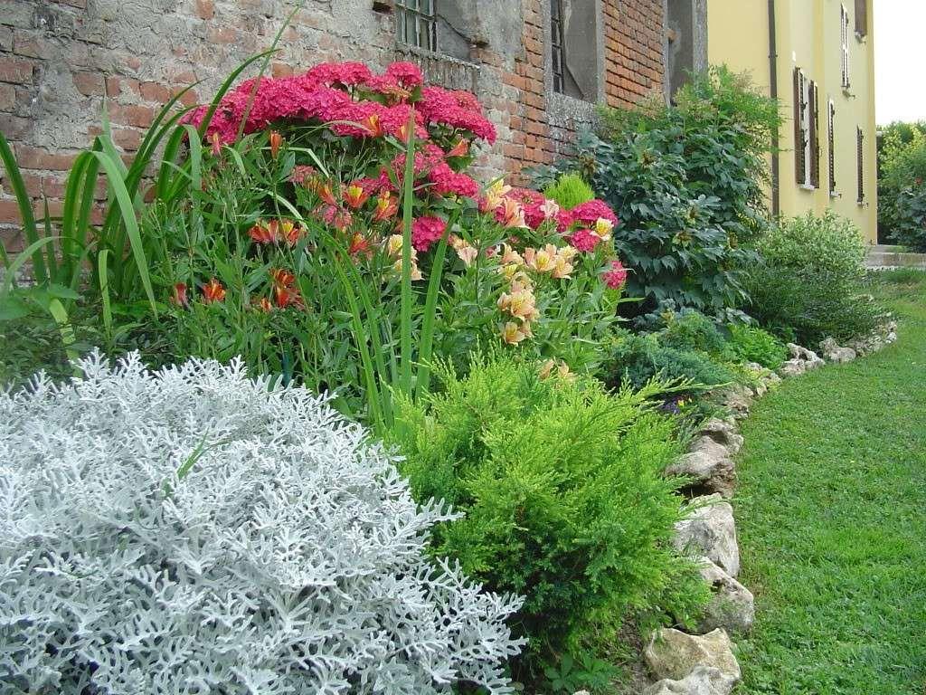 Progettare Un Giardino In Campagna progettare un giardino rustico | giardini rustici, giardino