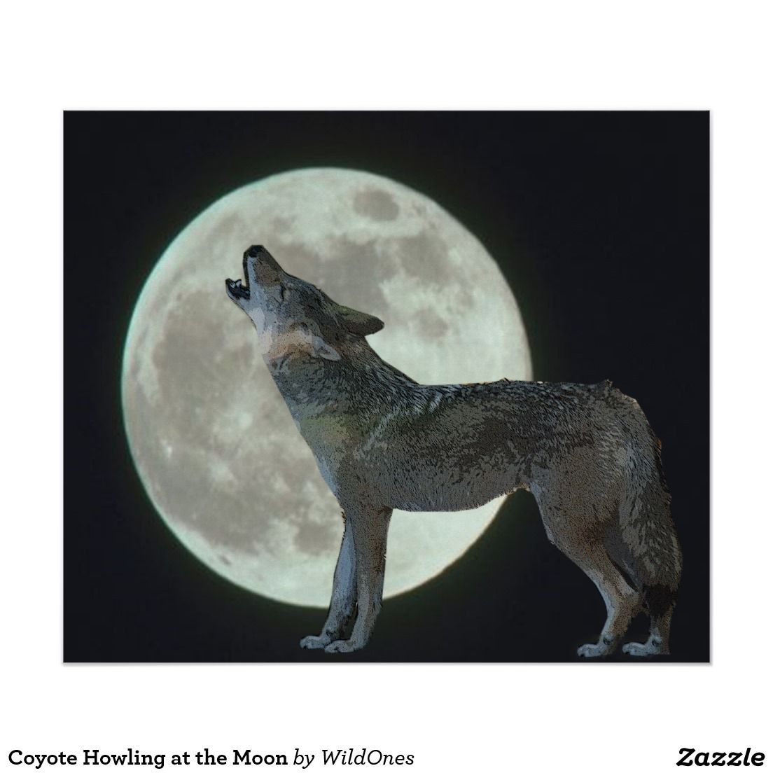Coyote Howling at the Moon Poster Howl at